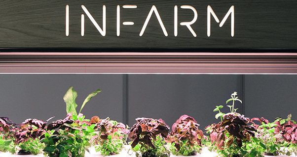 infarm Berlin urban farming