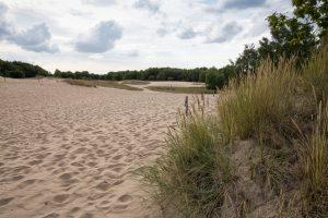 Sanddünen bei Boberg