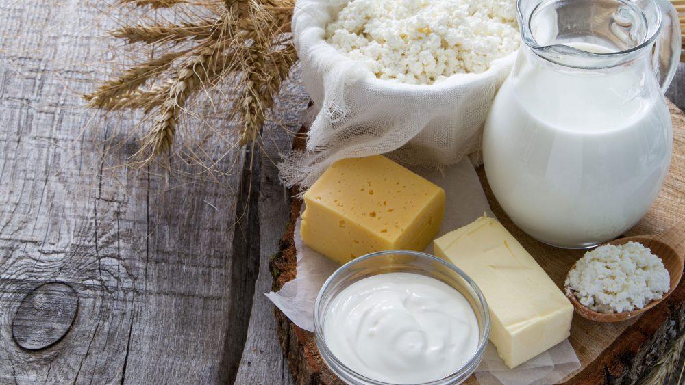Milch Käse Kühlschrank lagern