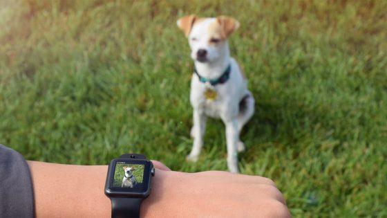 Kamera-Armband für die Apple Watch