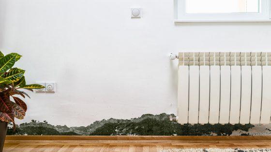 Außenwände sind kälter als Innenwände. Sie ziehen Kondenswasser an und sind besonders anfällig für Schimmel.