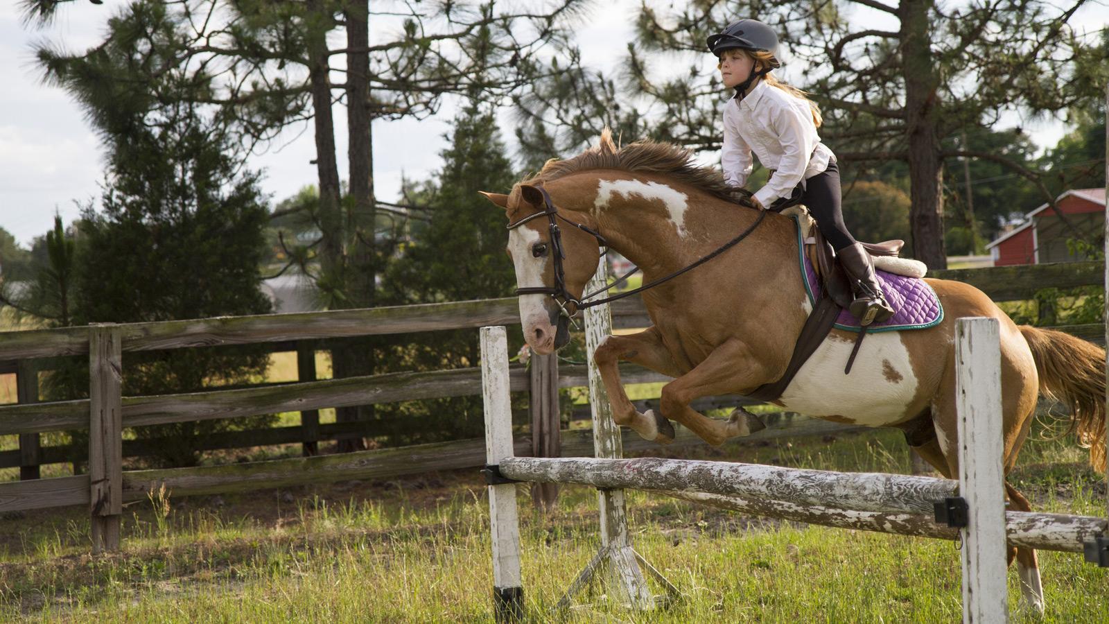 Ein Mädchen springt auf ihrem Pferd über ein Hinderniss