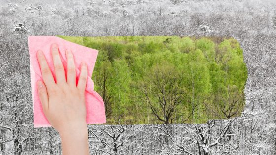 Symbolbild: Hand putzt schwarz-weiße Welt natürlich grün