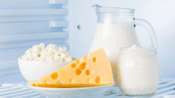 Lebensmittel optimal lagern Käse