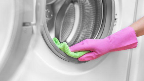 Gummidichtung der Waschmaschine richtig reinigen