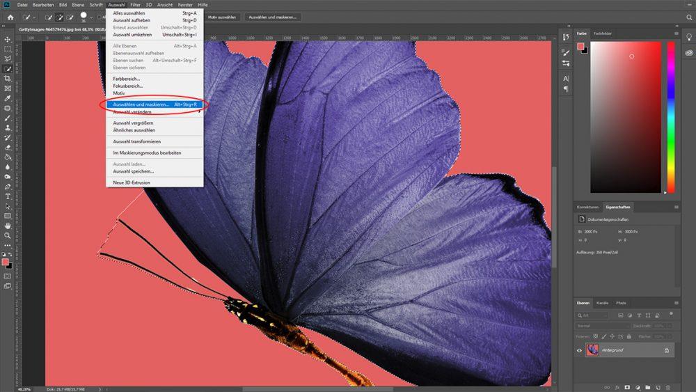 Schmetterling wird bei photoshop CC mit der Schnellauswahl freigestellt