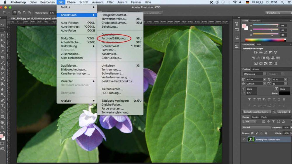 Photoshop Befehl Farbton Sättigung