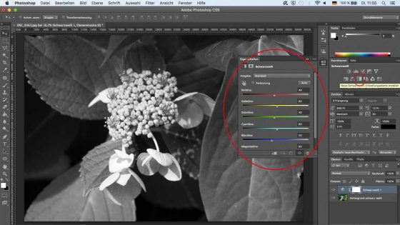 Photoshop Schwarz Weiß Filter