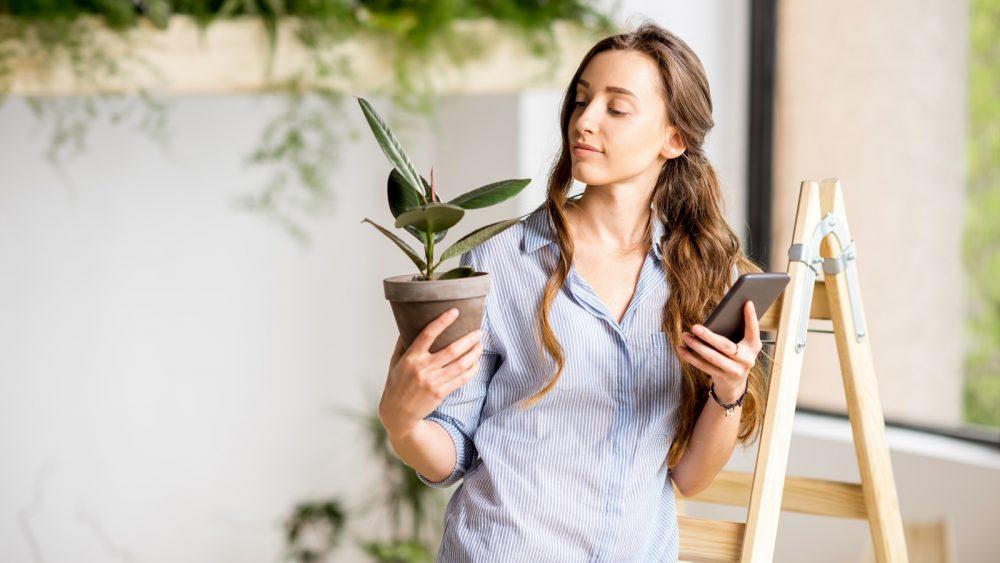 Frau bestimmt mit einer App auf dem Smartphone eine Pflanze
