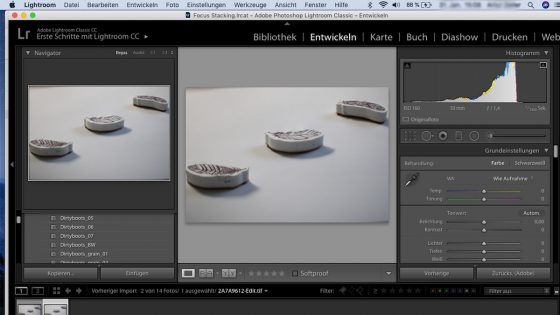 Focus Stacking: Lightroom - entwickeln