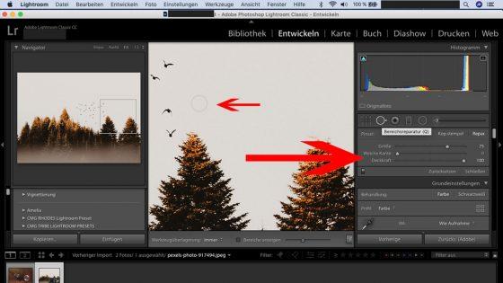 Lightroom-Workflow: Bereichsreparatur durchführen