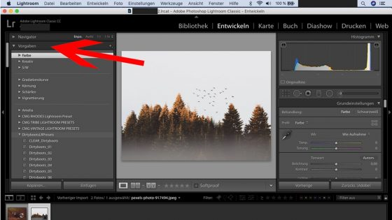Lightroom-Workflow: Preset auswählen