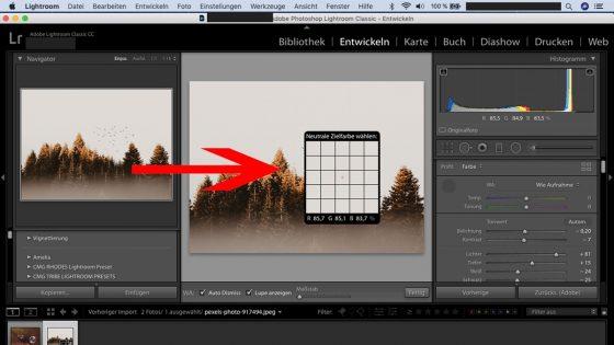 Lightroom-Workflow: Weißabgleich Zielfarbe
