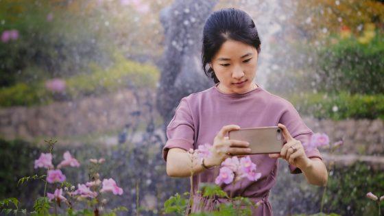 Blumen im Frühling fotografieren: So klappt es mit den Aufnahmen