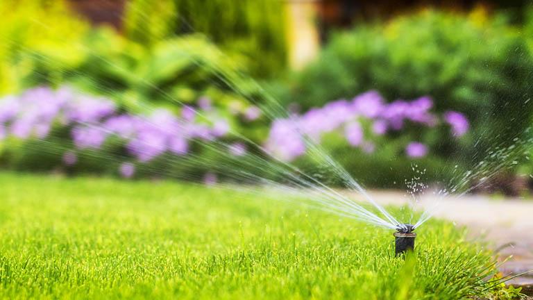 Smart-Home-Systeme machen auch den Garten smart