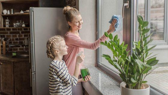 Fenstersauger 6 Modelle für streifenfreien Durchblick-3