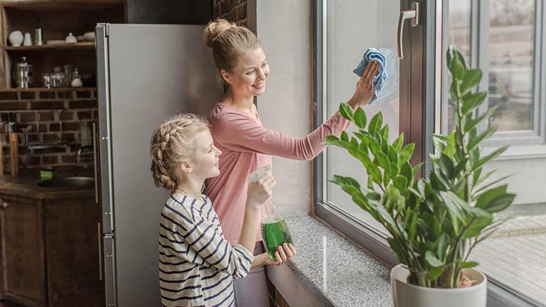 Fenstersauger Haushalt putzen