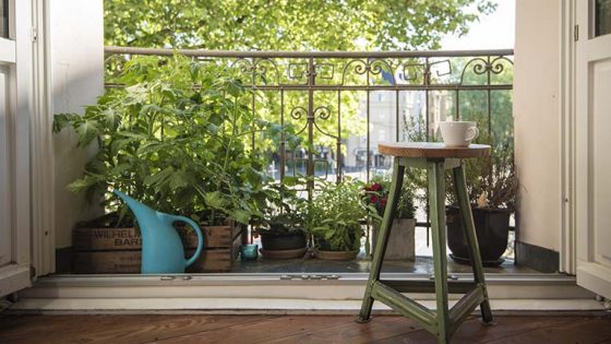 Kleiner Balkon mit Pflanzen und Blumentöpfen
