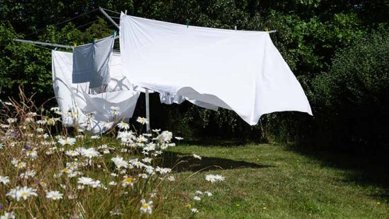 Waschmaschine zieht keinen Weichspüler: Gründe und Lösungen