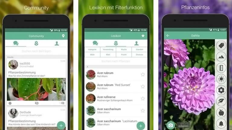 AndyGreen-App für Pflanzenbestimmung: Community und Lexikon helfen bei der Suche