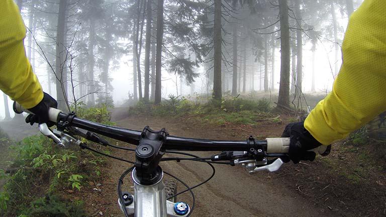 GoPro-Aufnahme von einer Fahrrad-Tour durch den Wald