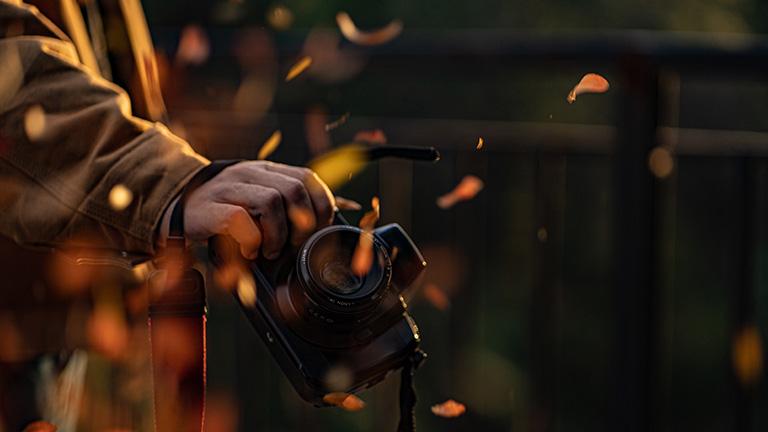 Eine Person hält eine Spiegelreflexkamera in der Hand. Im Vordergrund fliegen bunte Herbstblätter.