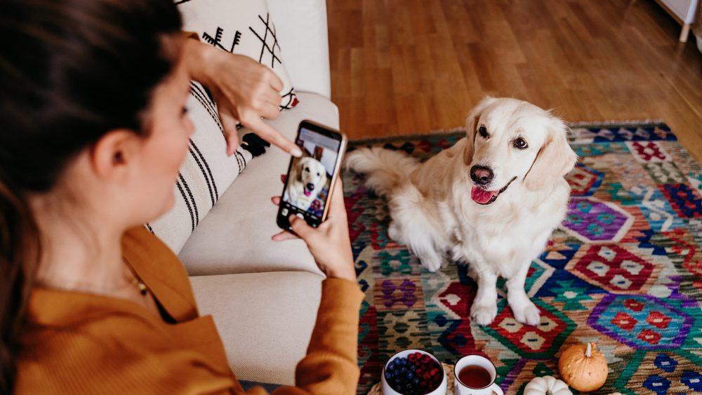 Eine Frau richtet ihr Smartphone auf ihren Hund, der vor ihr auf dem Teppich sitzt. Auf ihrem Smartphone stellt sie das Motiv scharf.